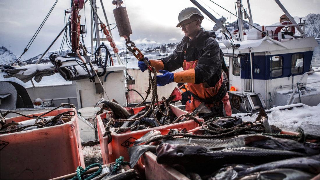 اقتصاد نروژ صنعت آبزیپروری بیماری هلندی نفرین منابع