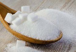 افزایش تولید شکر