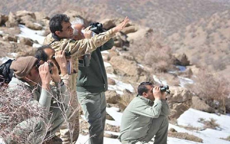 ۲۳۶ شکارچی در استان سمنان دستگیر شدند