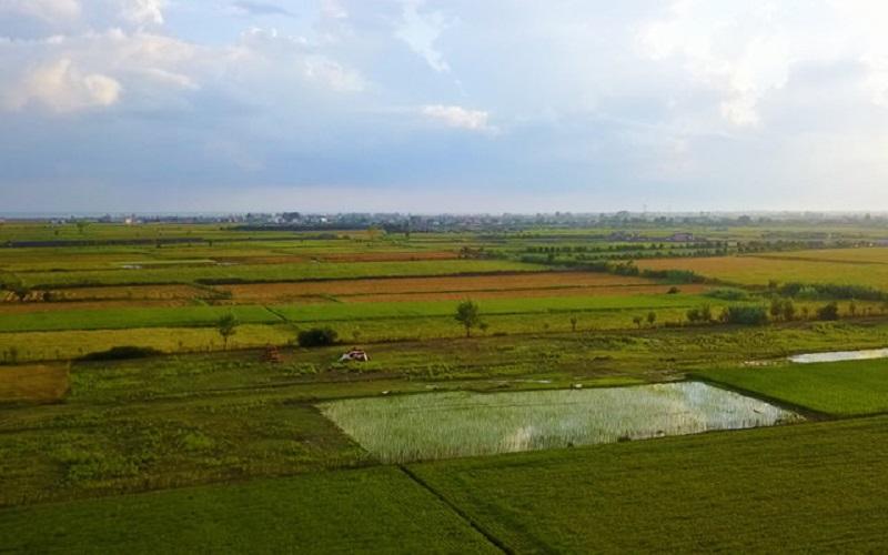 کشاورزی کشور علمی مدیریت نمیشود