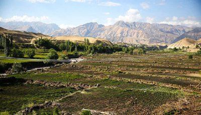 خسارت 1468 میلیاردی به بخش کشاورزی آذربایجانشرقی