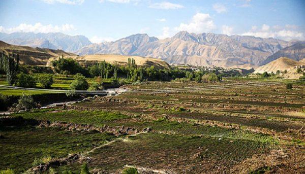 امهال تسهیلات کشاورزان خسارت دیده از حوادث غیرمترقبه