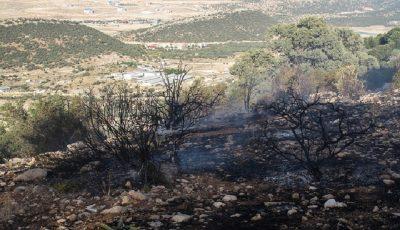 مهار آتشسوزی جنگلها و مراتع منطقه حفاظت شده خائیز پس از 9 ساعت