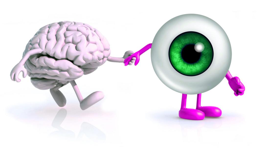 شیرجه در خوشبختی مغز و چشم دست در دست