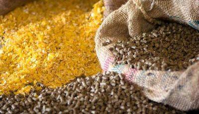 واردات بیش از ۲ میلیون تن نهاده دامی به کشور