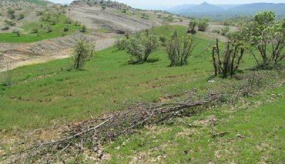 رفع تصرف از ۵۸ هزار مترمربع اراضی ملی فیروزکوه