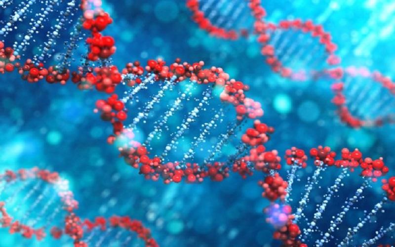 دستکاری ژنها احتمال ابتلای انسان به سرطان را افزایش میدهد