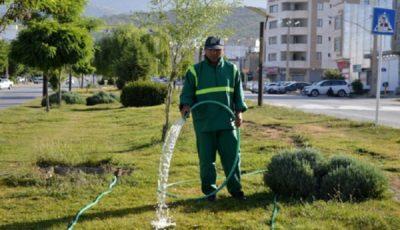 آبیاری فضای سبز در طول روز ممنوع شد