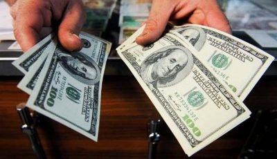 تشکیل پرونده برای قاچاق ۲۵۰ میلیون دلار ارز در سه ماهه امسال