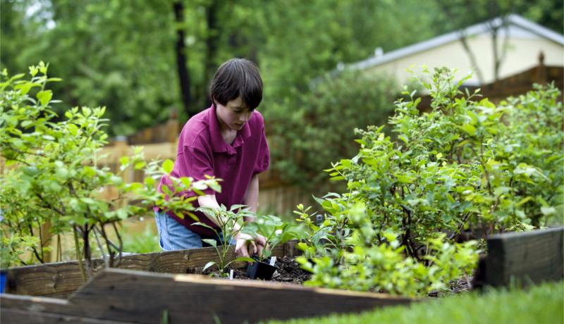 نبوغ ذاتی تبدیل پول ثروت پسر کار کردن باغ باغبانی