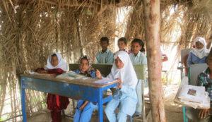 شاخصه توسعه انسانی مدرسهسازی
