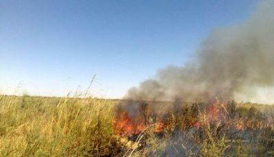 ادامه تلاشها برای خاموشی آتش در بخش عراقی تالاب هورالعظیم