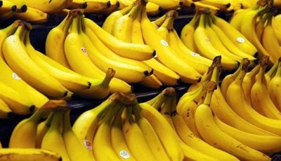 ۱.۵ برابر واردات میوه صادرات دارم