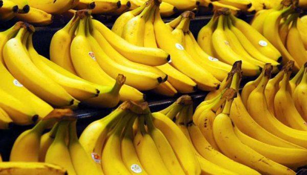 کاهش واردات موز به کشور در ۴ ماهه نخست سال جاری