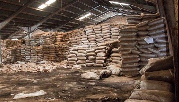 جنجال مزایده ۲۶ هزار تن چای تاریخ مصرف گذشته