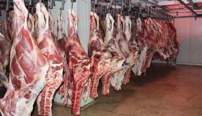 تولید گوشت قرمز کم شد