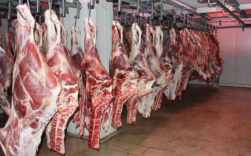 قیمت گوشت قرمز کاهش مییابد