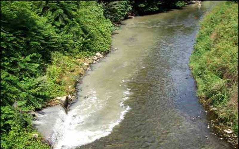 آلودگی آبهای داخلی باعث از بین رفتن زیستگاهها میشود