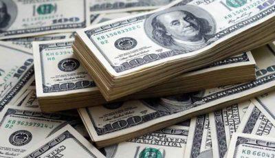 افزایش بیسابقه دلارهای تقلبی در بازار