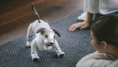 سگ رباتیک رقیب سگهای واقعی شد