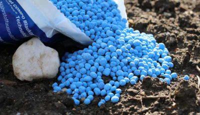 کسری کود شیمیایی در بازار تا ۱۵ روز آینده جبران میشود