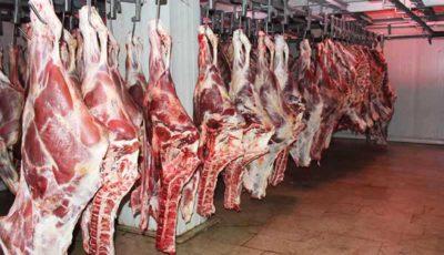 افزایش ۷ درصدی واردات گوشت گاو منجمد