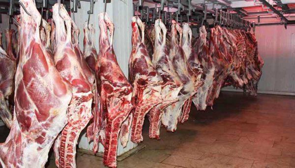 علت گرانی در بازار گوشت و مرغ چیست؟