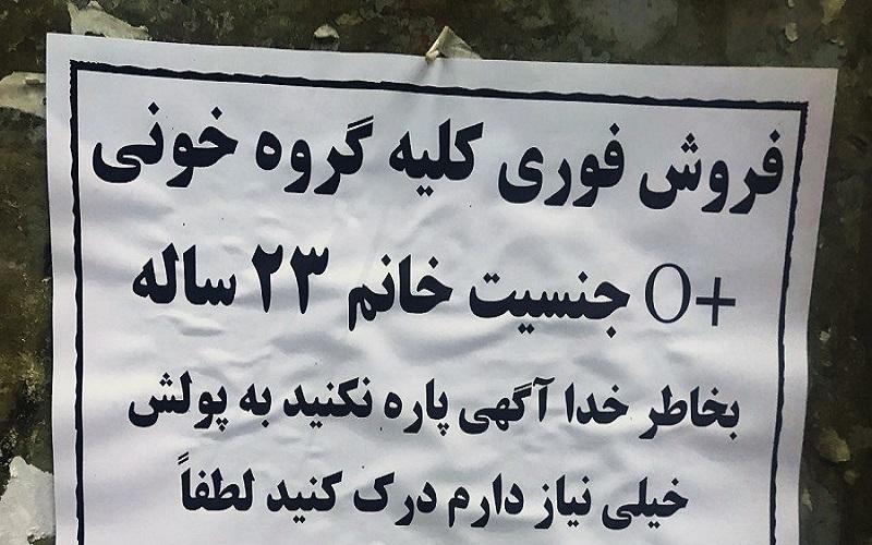 صفر تا صد خرید کلیه در ایران/ قیمت یک کلیه چند؟