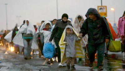 بیشترین دلیل مهاجرت افراد در سال گذشته چیست؟