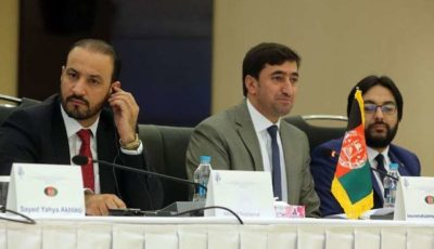 بخش خصوصی افغانستان آماده سرمایهگذاری در چابهار است