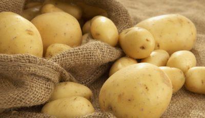 ارزانی سیبزمینی و گرانی روغن نباتی (اینفوگرافیک)