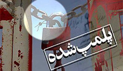 پلمپ ۱۱۳ مرکز عرضه غیرمجاز دام در کرمانشاه