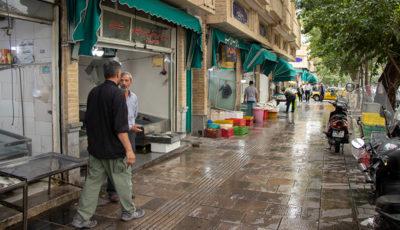 بازار خلوت ماهیفروشان سرچشمه (گزارش تصویری)