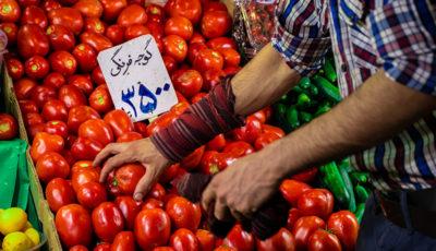 گوجه و رب در تیررس تورم
