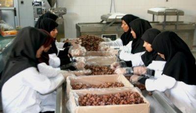 بانوان سیستان و بلوچستان؛ ۷۵ درصد متقاضیان اشتغال روستایی