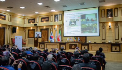 فصل جدید روابط تجاری ایران و کره/اعلام پیششرط ایران برای افزایش مبادلات