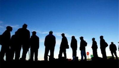 دام سودجویان برای متقاضیان مهاجرت شغلی