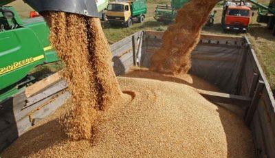 رشد 54 درصدی صادرات غلات روسیه در سال 2018
