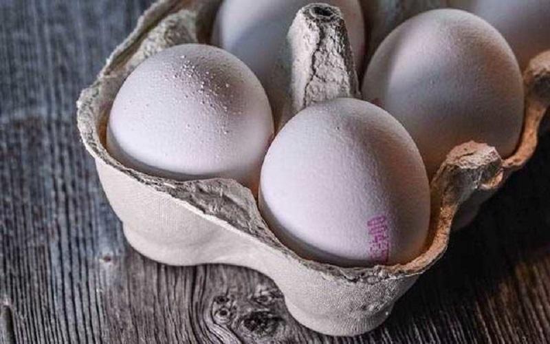 افزایش قیمت تخممرغ با وجود کنترل آنفلوآنزا
