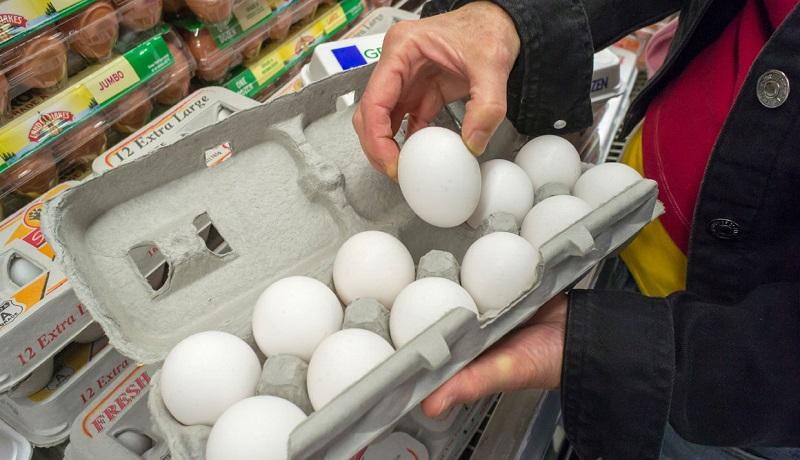 تخممرغ در شهرهای جنوبی کمیاب شد
