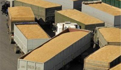 تکذیب قاچاق خاک ایران به قطر