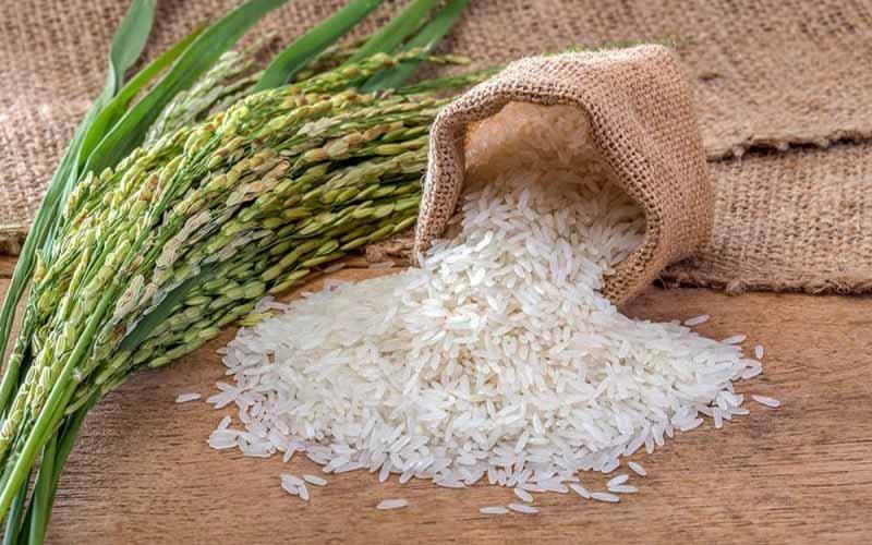 تاثیر سیل بر تولید و قیمت برنج