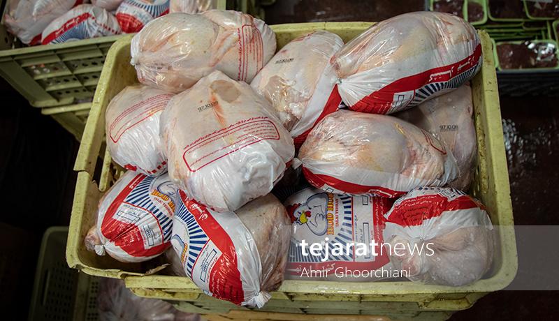 جدیدترین قیمت مرغ در بازار