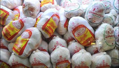 روزانه ۱۰۰ تن مرغ منجمد تنظیم بازاری توزیع میشود