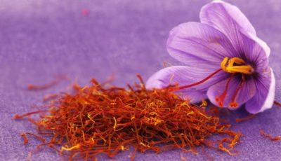 بزرگترین تاجران زعفران / کدام کشورها بیشترین زعفران را خریدوفروش میکنند؟