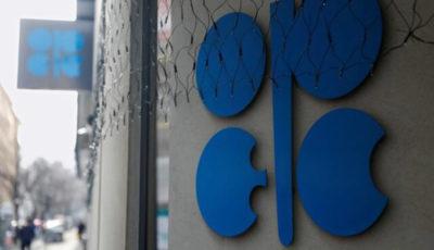 چشمانداز منفی اوپک از آینده بازار نفت خام
