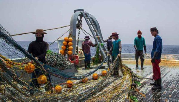 توقیف ۱۴ فروند شناور صید غیرمجاز چینی