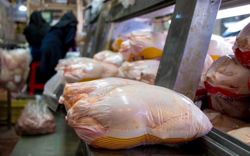 قیمت مرغ به ۱۹.۵ هزار تومان رسید