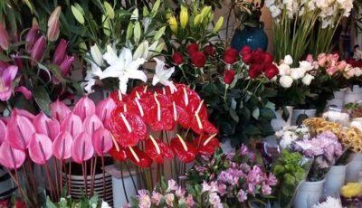 قیمت گل برای روز مادر گران نمیشود