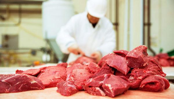 با گرانی مواد غذایی چه کنیم؟